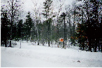 Northern Michigan Real Estate Property Ocqueoc Road Residential Lot
